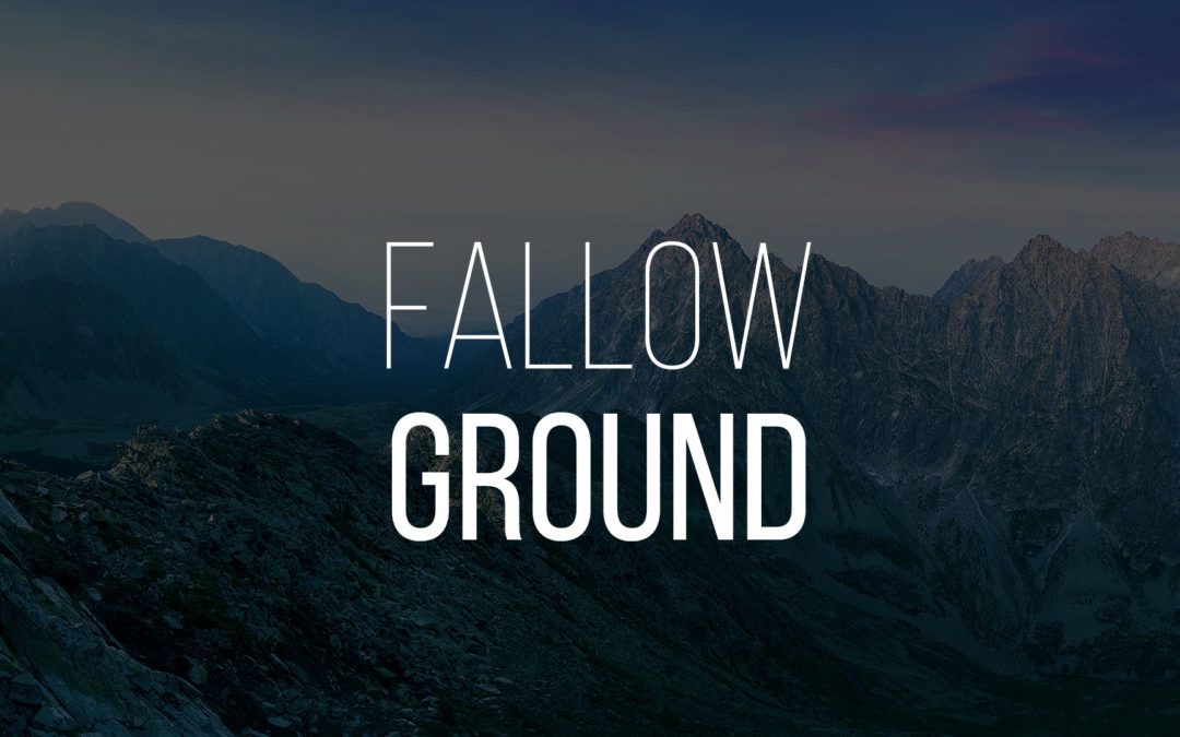 Fallow Ground