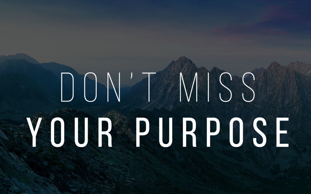 Don?t Miss Your Purpose
