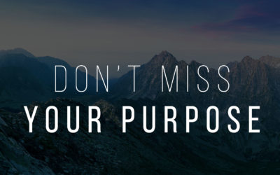 Don't Miss Your Purpose