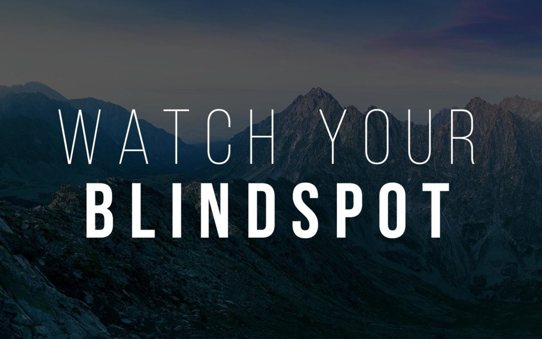 Watch your Blind Spot
