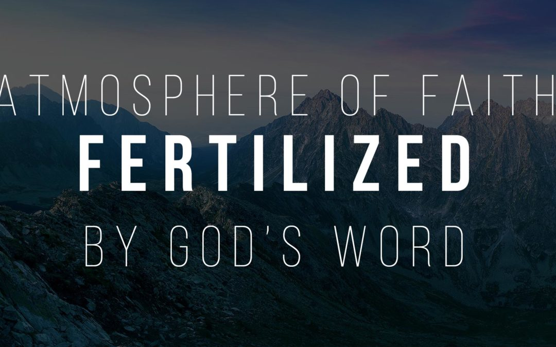 Atmosphere of faith fertilized by God's word