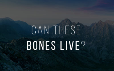 Can These Bones Live?