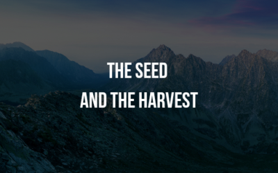 The Seed and The Harvest