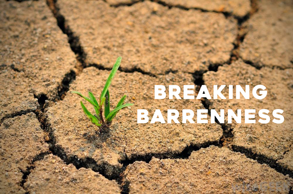 Breaking Barrenness